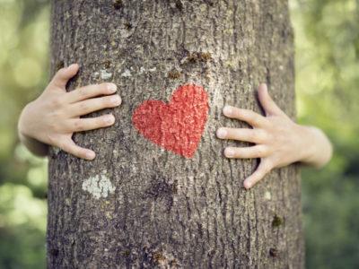 15 környezettudatos lépés a mindennapokban